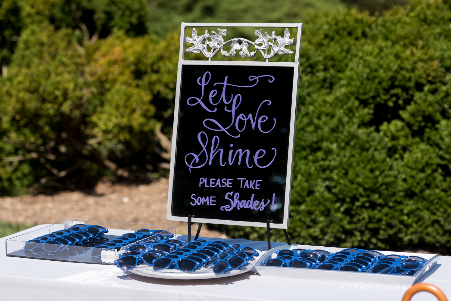 Picnic Weddng Inspiration. DC Wedding Planner Bright Occasions, Moshe Zusman Photography.
